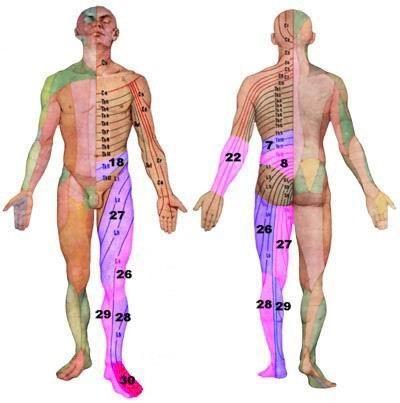 Как быстро восстановиться после травмы нижних конечностей